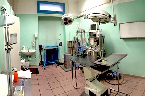 Foto della sala chirurgia della clinica veterinaria Sant'Eufemia